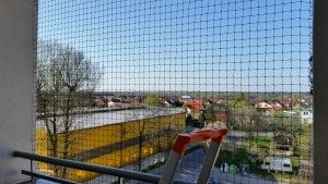 kocia siatka bełchatów na balkon